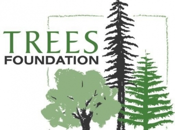Trees Foundation