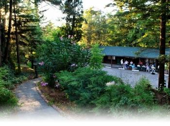 Sherwood Forest Motel