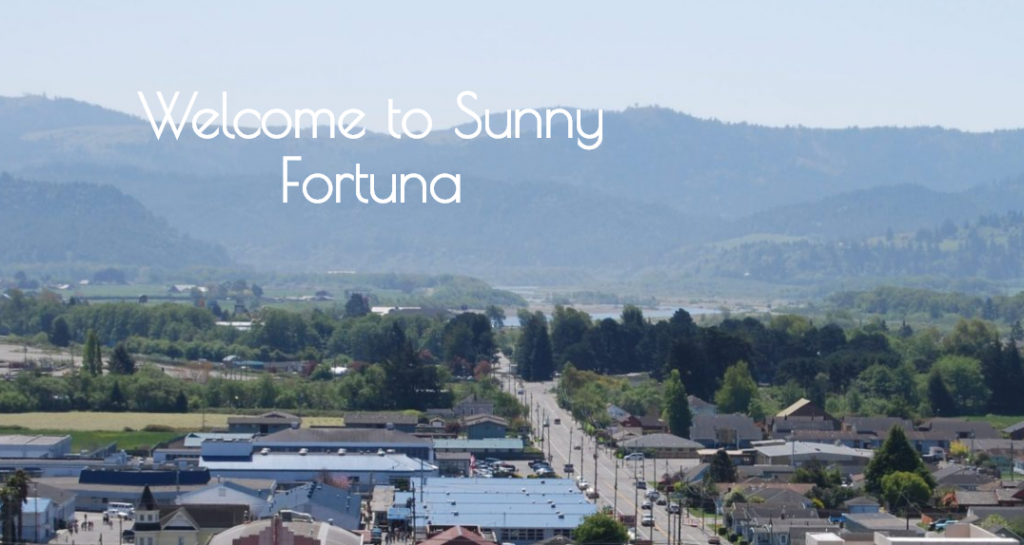 FireShot Pro Screen Capture #067 – 'Fortuna Chamber of Commerce – Sunny Fortuna's Chamber' – fortunachamber_com