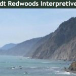 Humboldt Redwoods Interpretive Association