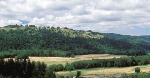 FireShot Pro Screen Capture #106 – 'Southern Humboldt Community Park' – www_sohumpark_org