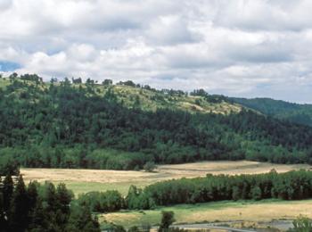 Southern Humboldt Community Park