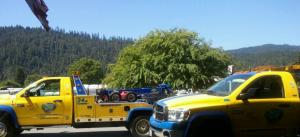 FireShot Pro Screen Capture #129 – 'Couple of the smaller trucks_ – Yelp' – www_yelp_com