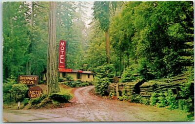Garberville-California-Postcard-OVERPACKS-GROVE-RESORT-MOTEL-Redwoods