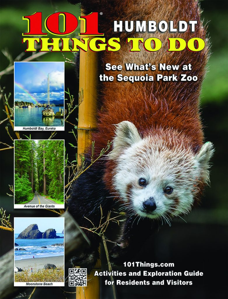 101 Things To Do / Regional Visitor Publications