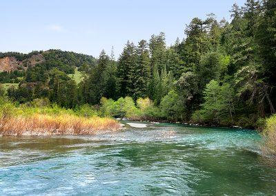 Benbow Lake SRA